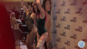 AVN - Adult Entertainment Expo